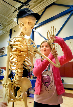 BRYAN EATON/Staff photo. Emily Chandler, 8, gets acquainted with Stanley at the STEM (Science, Technology, Engineering and Math) Expo at the Bresnahan School in Newburyport on Friday morning. Lynda Kuhne, director of physical therapy at the Anna Jaques Hospital, was one of the interactive presentors at the school, in this display letting children know that Stanley had a cracked skull, relating how helmets are important when riding bicycles.