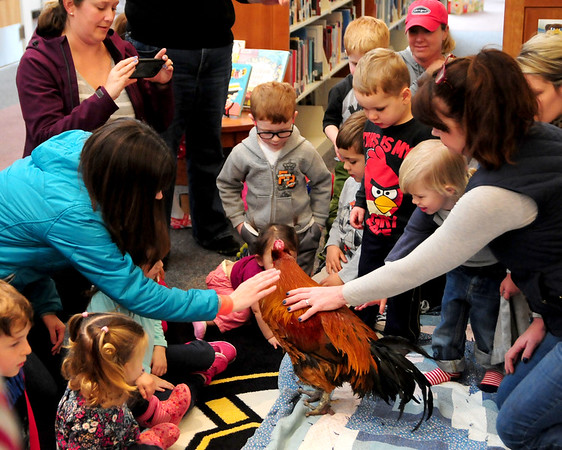 JIM VAIKNORAS/Staff photo Kids pet Rusty the Roster during his visit to the Newbury Library Friday. Rusty lives at the Spencer-Peirce-Little Farm in Newbury and was brought to the library by Education Coordinator Arleen Shea.