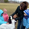 JIM VAIKNORAS photo Education Coordinator  Arleen Shea gets help from Marlowe Reczek feeding Sky, the newest resident at the Spencer-Pierce-Little farm in Newbury.  Looking on are Anna Toomey, Maia Cormier and Silas La Vita, all members of  the Farm Friends Program