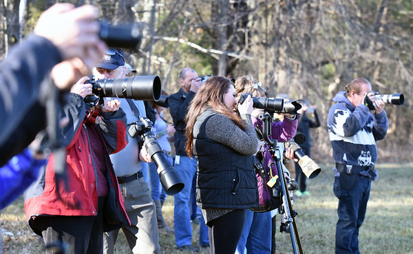 BRYAN EATON/Staff photo. Over a dozen birders were on hand for the owl's release.