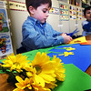 BRYAN EATON/Staff photo. Hunter Gauthier, 6, cuts out yellow pieces of paper to match the flowers before him in art class at Amesbury Elemtary School. Art teacher Sara Romos provided different flowers for the students to make collages of to celebrate spring.