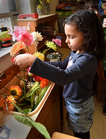 BRYAN EATON/Staff photo. Anabelle Mucha, 5, arranges flowers, albeit imitition blooms, in Aimee Farrell's kindergarten class at Salisbury Elementary School on Wednesday. The students then deliver them to office and other support staff in what has become a spring tradition.