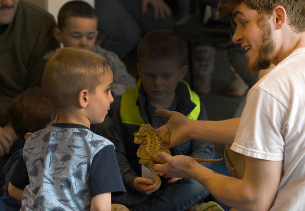 "JIM VAIKNORAS/Staff photo Nik Parent of Curious Creatures askes Thomas Ireson, 3, of Salisbury if he wants to touch Smaug, a Australian bearded dragon during a ""Curious Creatures"" presentation  at Joe's Playland on Salisbury Beach."