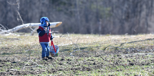 JIM VAIKNORAS/Staff photo Anthony Difiore, 3, was one of the last hunters looking for eggs at the Bradstreet Farm in Rowley. The event venue which recently opened, brought back the egg hunt which for years was put on by the Bradstreet family.