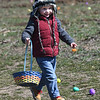 JIM VAIKNORAS/Staff photo Lawson Bertand, 4, hunts for eggs at the Bradstreet Farm in Rowley. The event venue which recently opened, brought back the egg hunt which for years was put on by the Bradstreet family.