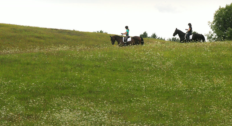 BRYAN EATON/ Staff Photo. Equestrians explore the hills at Woodsom Farm in Amesbury on Thursday afternoon.