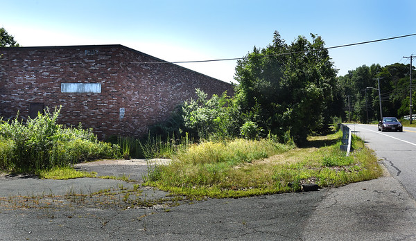 BRYAN EATON/Staff photo. The former Microfab building on Route 110 (Haverhill Road) in Amesbury is covered with overgrowth.