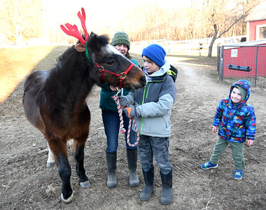 JIM VAIKNORAS/Staff photo Boo the pond wears reindeer antlers as Mary Martin introduces him to Henry Smith, 9, of Groveland and Hunter Moss, 4, of Berwick Maine. at the North East Equine Rescue open house in west Newbury Saturday.
