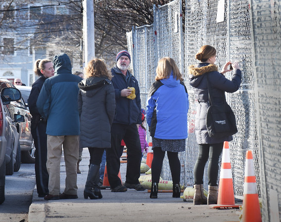 BRYAN EATON/Staff photo. Passersby braved the cold to watch and take photos of the steer.