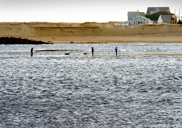 BRYAN EATON/Staff photo. People and their dogs venture out on a sandbar at Plum Island Point in the Merrimack River in a view from Salisbury Beach State Reservation around 1:00 p.m. on Wednesday. They had a little time to spend as the tide was going out with the low at 3:10 p.m.