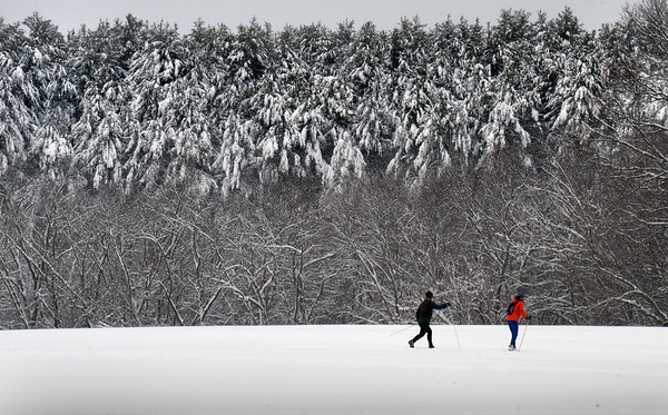 BRYAN EATON/Staff Photo. Two of several cross country skiers head out on the fields at Maudslay State Park in Newburyport under snow-covered white pine trees. Sun returns today and tomorrow with the high temperature around 40 degrees which will cause some melting of the snow.