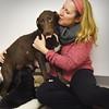 BRYAN EATON/Staff photo. Cynthia Sweet with a lab mix who's still nursing her litter.