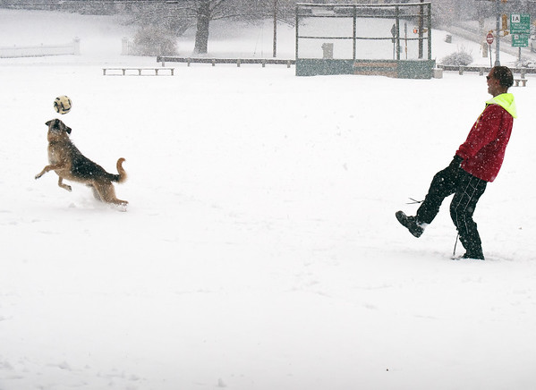 BRYAN EATON/Staff photo. Mark Williamson of Newburyport plays ball with his dog Moby on Newbury's Upper Green at the height of Wednesday's storm. The skies are clear today with the temperature at about freezing.