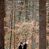 JIM VAIKNORAS/Staff photo Two women take a walk through a snowy Maudslay State Park in Newburyport Sunday morning.