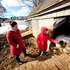 JIM VAIKNORAS/Staff photo Ayla Cuddire, 8, along with her mom Jaimie, both of whom volunteer at the Spencer Pierce-Little Farm comfort Big Dave the pig Monday afternoon at the farm. Dave, a fixure at the Historic Newbury spot, was put down after a long life, he was 10 years old.