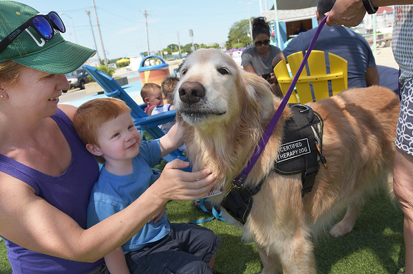 TIM JEAN/Staff photo<br /> <br /> Rebekah Waterson of Amesbury and her son Oliver, 2, pat Prince, a Golden Retriever therapy day after a reading story time during Kids Day on the Broadway Mall at Salisbury Beach. Every Tuesday from starting at 10 am thru August 28th events will take place for children.         7/10/18