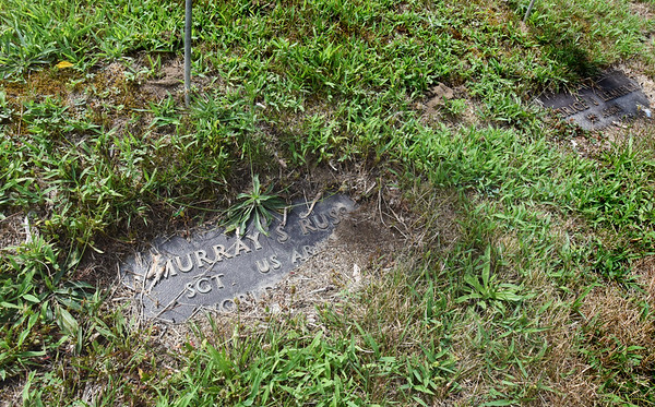 BRYAN EATON/Staff photo. The grave markers needed the edging as they have become overgrown. Jancewicz would like to see the stones raised up a bit some time in the future.