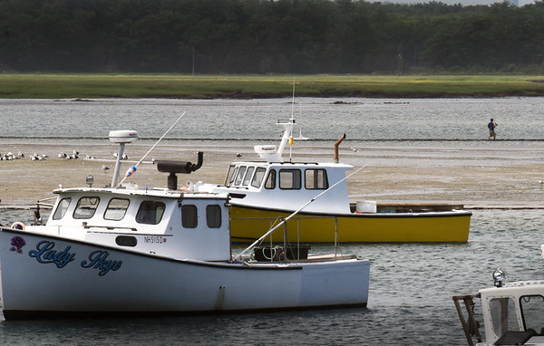 BRYAN EATON/Staff photo. A fisherman casts his line way onto Seabrook harbor during low tide on Monday afternoon. Access has to be made from River Road near the town pier.