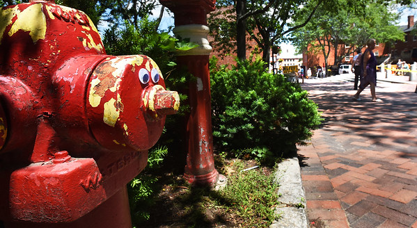 BRYAN EATON/Staff photo. Googly eyes on a fire hydrant on Inn Street in downtown Newburyport.