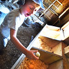 BRYAN EATON/Staff photo. Marcel Matas, 4, grabs some eggs from the laying boxes.