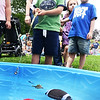 BRYAN EATON/Staff photo. Cayson Curtis, 4, tries his luck at pulling out toy fish in the wading pool at Kids Day in the Park for Amesbury Days. The four-year-old from Methuen and his mom were visiting friends in Amesbury.