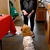 JIM VAIKNORAS/Staff photo Sue Cap gives a treat to her daughters dog McKinley, who is wearing his Off The Mark shirt.  She won having her pets featured in the comic at the Feline Rescue Society's Fur Ball.