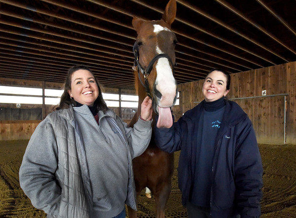 BRYAN EATON/Staff photo. Sisters Deidre Henry, left, and Darla Wright, who share training responsibilities at High Tail Acres, LLC have been named Horsepersons of The Year and will also receive the Distinguished Service Award. These awards are from the United Professional Horsemen's Association, our local Chapter 14. UPHA Chapter 14  includes New England and New York. They're posing with their horse Hollywood who isn't taunting the photographer, he likes to stick his tongue out.