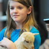 JIM VAIKNORAS/Staff photo caileigh Morgan holds Timber at the Senior Center in Amesbury. About 40 people showed up to meet and pet the animals brought by Animal Craze Traveling Farm Friday. Along with goats , they had piglets , ducks, rabbits and chickens.