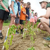 BRYAN EATON/Staff photo. Heron Pond Farm's Reina Balog prepares campers from Camp Kent about how to plant basil.