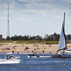 BRYAN EATON/Staff photo. Plum Island Lighthouse can be seen just to the left of this catamaran as it heads out of the Merrimack River at the Newburyport end of the barrier island. The Fourth of July had stellar weather for boating and other outdoor activities which should continue until Friday when showers appear likely.