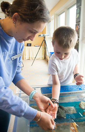 JIM VAIKNORAS/Staff photo David Wilkins , 5, of Cambridge checks out a sea star with a little help from intern Isabel Berzansky at Meet the Beach Creatures at the Joppa Flats Education Center in Newburyport Friday.