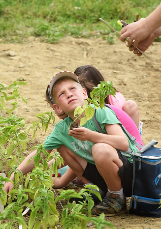 BRYAN EATON/Staff photo. Teddy Hildt, 7, listens to Reina Balog's instructions on planting the basil.