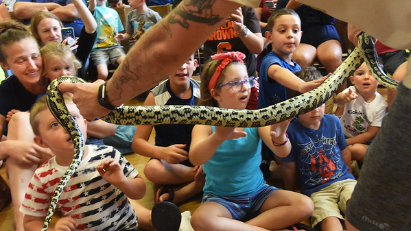 BRYAN EATON/Staff Photo. Children check out a jungle carpet python named Oscar from Australia held by Alex Hartley of Reptile Shows of New England. He presented the show at Amesbury City Hall which was sponsored by Friends of the Amesbury Public Library on Friday morning.