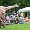 BRYAN EATON/Staff photo. The Theatre in the Open's mascot giraffe made the rounds at Waterfront Park to the delight of children at the American Rhythm and Roots Festival, the person inside the costume likely needing some ice water as the temperature was 94 degrees.