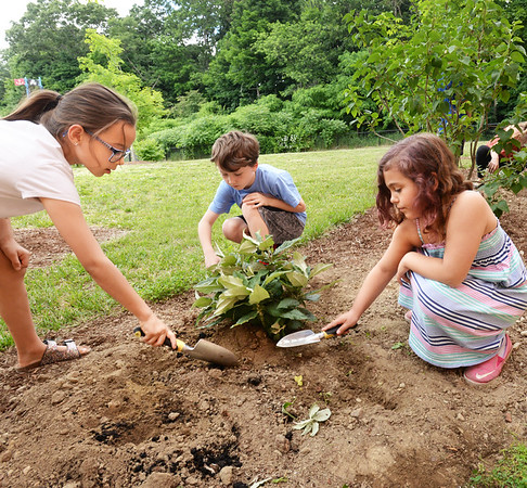 BRYAN EATON/Staff photo. Putting in plants at the Butterfly Garden at the Bresnahan School, from left, Lucia Ramirez, Kevin McCoy and Lucia Savastra, all 8.
