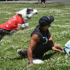 BRYAN EATON/Staff Photo. Mike Piazza of Flying High Dogs brought three of his border collies to the Newburyport YWCA Summer Program at the Bresnahan School where they entertained the children doing all kinds of acrobatics in addition to catching frisbees in mid-air. Volunteer Max Brager, 8, and Piazza stay on the ground as Maui flies over the two to catch the frisbee.