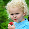 BRYAN EATON/Staff Photo. Bode Neipp, 2, enjoys the fruit of his siblings' labor, even getting some in his mouth.