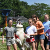 BRYAN EATON/Staff Photo. Mike Piazza of Flying High Dogs brought three of his border collies to the Newburyport YWCA Summer Program at the Bresnahan School where they entertained the children doing all kinds of acrobatics in addition to catching frisbees in mid-air. Here Maui jumps up as youngsters took turns tossing the frisbee into the air.