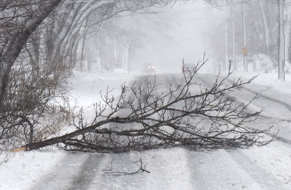 BRYAN EATON/Staff photo. Power lines and tree limbs were reported down thoughout the area Tuesday afternoon, this on one Ocean Avenue in Newburyport near the Plum Island Turnpike.