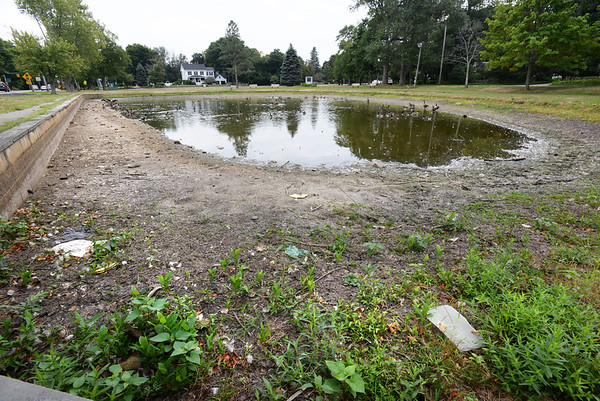 BRYAN EATON/Staff photo. The frog pond on Newbury's Upper Green was just an oversized puddle at the end of August last year during drought conditions.
