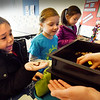 BRYAN EATON/Staff photo. Jack Horgan, left, holds a worm used for composting food into organic matter as fellow kindergartners Avery Russell and Ella Carvalho listen to Newburyport Health Nurse Pam Palombo desribe the process showing a bin of such.