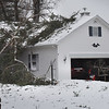 BRYAN EATON/Staff photo. A white pine limb fell onto this house at 12 Ridgemere Way off Whitehall Road in Amesbury. A woman was home at the time and transported to a hospital as a precaution.