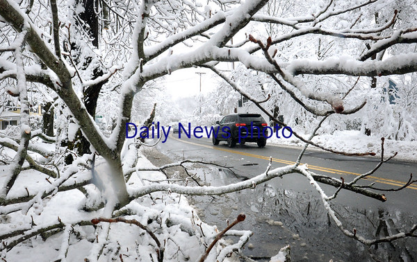 BRYAN EATON/Staff photo. There were many limbs and branches down along Main Street in Amesbury.