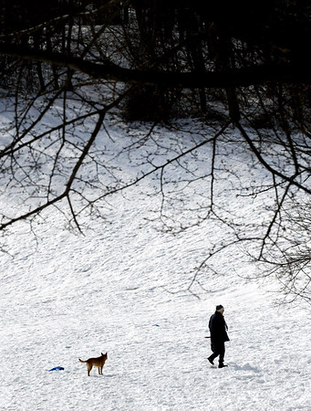 JIM VAIKNORAS?staff photo A woman and her dog walk through March's Hill Wednesday morning. The snow is expected to hang around throughout the week.