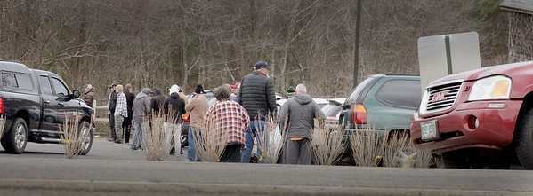 BRYAN EATON/Staff photo. The line at Alternative Therapies Group snaked around the parking lot and cars were parked along Elm Street in Salisbury as Governor Baker announced recreational marijuana shops would have to close on Tuesday at noon.