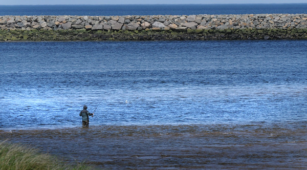 BRYAN EATON/Staff Photo. A fisherman wades out on a sandbar at low tide in the Merrimack River at Plum Island Point on Tuesday afternoon,.