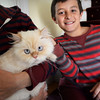 BRYAN EATON/Staff Photo. Jason Szycher, 11, pets his cat Dwighty who is recovering from a coyote bite outside their West Newbury home.