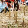 BRYAN EATON/Staff photo. Kayla Harrington, left, and Devin Jackson, both 10, put in dune grass.