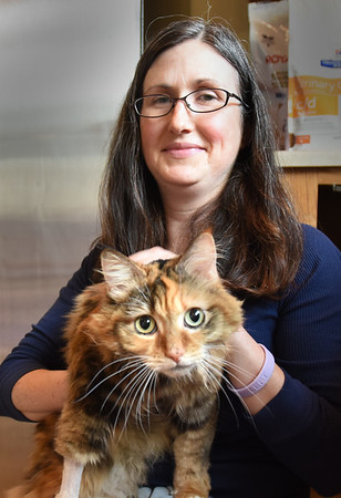 BRYAN EATON/Staff photo. Liz Pease of the Merrimack River Feline Rescue Society with Marbles.
