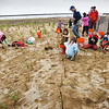 BRYAN EATON/Staff photo. Molin Upper Elementary School fourth grade students helped plant dune grass on Plum Island. They were helping out with the University of New Hampshire's Sea Grant Program.
